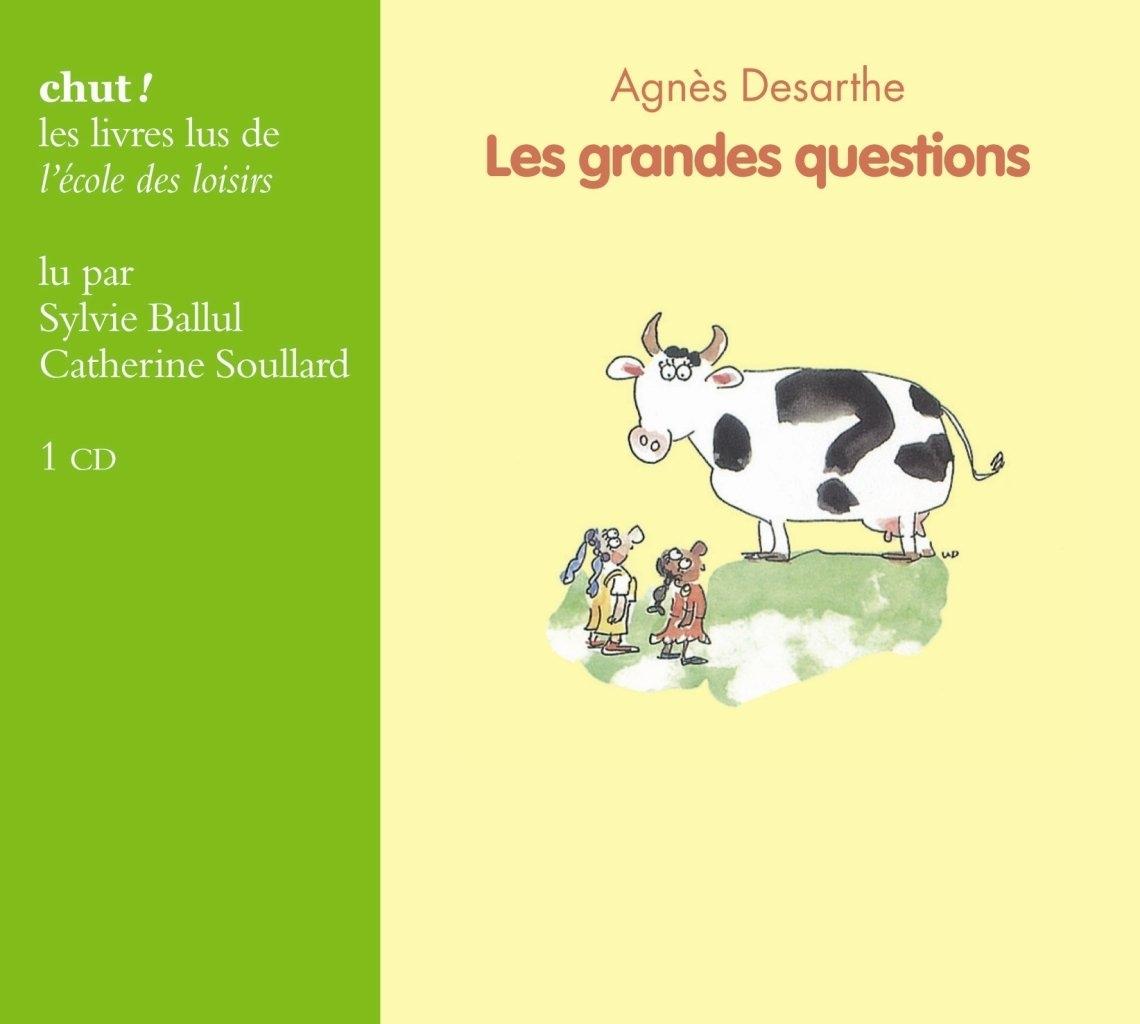 Les grandes questions de Agnès Desarthe