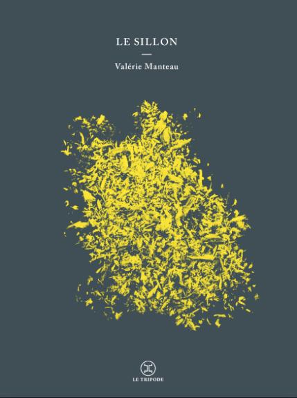 Le sillon de Valérie Manteau
