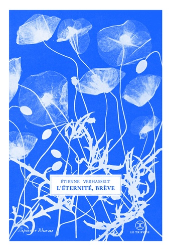 L'éternité, brève de Étienne Verhasselt
